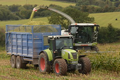 Claas Jaguar 970 SPFH filling a Broughan Engineering Mega HiSpeed Trailer drawn by a Claas Arion 640 Tractor (Shane Casey CK25) Tags: claas jaguar 970 spfh filling broughan engineering mega hispeed trailer drawn arion 640 tractor traktor traktori tracteur trekker trator tillage ciągnik self propelled forage harvester chopper silage silage18 silage2018 maize maize18 maize2018 winter feed fodder county cork ireland irish farm farmer farming agri agriculture contractor field ground soil earth cows cattle work working horse power horsepower hp pull pulling cut cutting crop lifting machine machinery nikon d7200