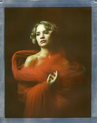 W. (denzzz) Tags: portrait polaroid largeformat 8x10 polaroidweek polaroidoriginals intrepidcamera fujinonc 300mm analogphotography filmphotography instantfilm roidweek walimex daylight1260