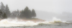 Acadia (rickhanger) Tags: acadia acadianationalpark acadianp nature nationalpark stormy storm waves surf ocean rain weather landscape
