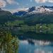 (1118) Nordfjord bei Stryn