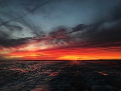 September skies on the ferry (saudades1000) Tags: redsky red colors beautiful amazing colorful fiery marthasvineyard dusk oceansunset sunset