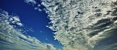 20180923_DP0Q4585-21x9 (NAMARA EXPRESS) Tags: landscape nature sky cloud 219 daytime autumn fall fine outdoor color toyonaka osaka japan spp spp661 foveon x3 sigma dp0 quattro wide ultrawide superwide namaraexp