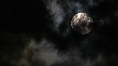 equinox-9250020.jpg (ddouriet) Tags: sky moon