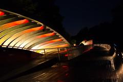 Henderson Wave Bridge (.John Wong) Tags: bridge singapore telok blangah hill park night