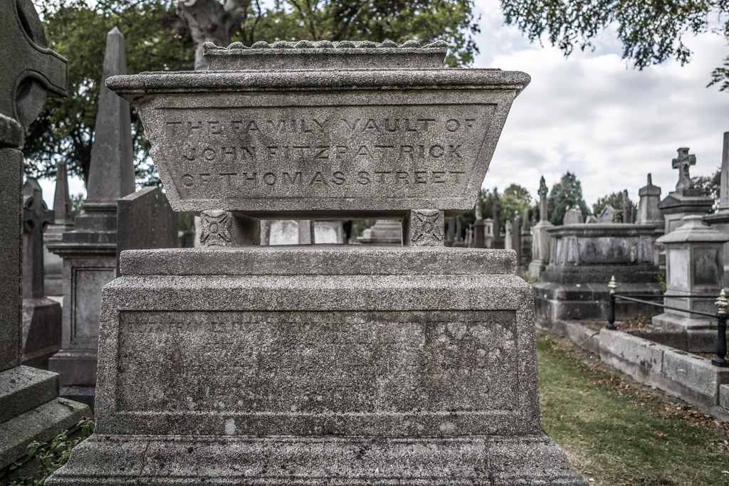 SEPTEMBER 2018 VISIT TO GLASNEVIN CEMETERY [ I USED A BATIS 25mm LENS AND I EXPERIMENTED WITH CAPTURE ONE]-144787