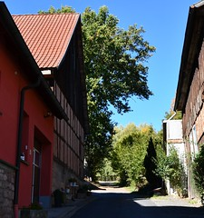 To the woods (:Linda:) Tags: germany thuringia village bürden path halftimbered barn oaktree