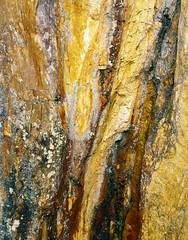 Slate Yellows (CactusD) Tags: england cumbria movements lakedistrict slate colour tilberthwaite quarry greatbritain great britain nikon texture uk unitedkingdom gb landscape film 5x4 4x5 details fuji fujichrome velvia velvia50 largeformat large format epson v850 linhof technikardan tks45 s45 nikkorw210mmf56 210mm f56