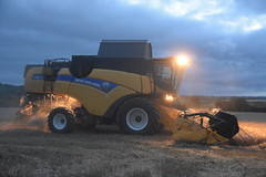 New Holland CX8.70 Combine Harvester cutting Spring Barley (Shane Casey CK25) Tags: new holland cx870 combine harvester cutting spring barley cx cx8 70 nh cnh yellow bartlemy newholland grain harvest grain2018 grain18 harvest2018 harvest18 corn2018 corn crop tillage crops cereal cereals golden straw dust chaff county cork ireland irish farm farmer farming agri agriculture contractor field ground soil earth work working horse power horsepower hp pull pulling cut knife blade blades machine machinery collect collecting mähdrescher cosechadora moissonneusebatteuse kombajny zbożowe kombajn maaidorser mietitrebbia nikon d7200