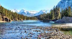 Bow River, Banff National Park - ICE(5)2903-05 (photos by Bob V) Tags: banff banffpark banffnationalpark banffalberta banffalbertacanada mountains rockies rockymountains canadianrockies panorama mountainpanorama bowriver river mountainriver