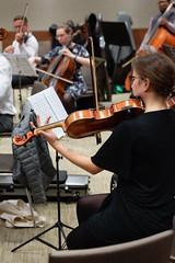_DSC6187 (erengun3) Tags: jp morgan symphony orchestra rehearsal jpmorgan beethovens 9th eastlondon london londra orkestra raffaello morales citygateway ezgigunuc ezgidalaslan ezgi gunuc violin