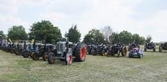 Parata di Landini (samestorici) Tags: trattoredepoca oldtimertraktor tractorfarmvintage tracteurantique trattoristorici oldtractor veicolostorico testacalda