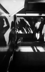 わぁぷほぅる (Dinasty_Oomae) Tags: leicaiiia leica ライカiiia ライカ 白黒写真 白黒 monochrome blackandwhite blackwhite bw outdoor 東京都 東京 tokyo 中央区 chuoku 銀座 ginza