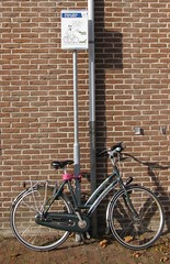 IMG_3377 (kassandrus) Tags: limespad hiking netherlands nederland law16 wandelen
