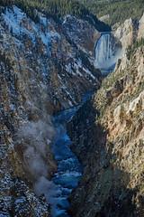 View of Lower Falls from Artist Point - Yellowstone (Ernie Orr) Tags: bobrussell rmrussell tetons nationalpark yellowstone yellowstonenationalpark wyoming grandcanyonoftheyellowstone lowerfalls artistpoint
