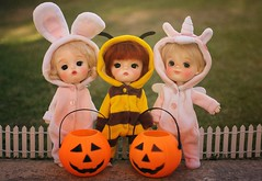 Trick or Treat 🎃 (Petitedoll) Tags: missstaryhat halloween toy bjd doll ming smile mong secretdoll