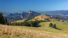 Pieniny Mountains seen from Durbaszka Mt. (Paweł Błaszak) Tags: travel landscape pieniny poland nature mountains
