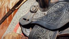 Pieles curtidas (SantiMB.Photos) Tags: 2blog 2tumblr 2ig desierto tabernas caballo horse silla saddle andalucia españa esp