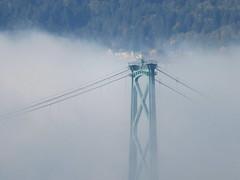Top of the fogbank (Reva G) Tags: bridge fog cloud mist lionsgatebridge northshore northvancouver west vancouver weather