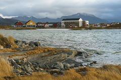 Norway (powell (pl)) Tags: norway norwegia sommaroy