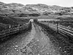 Livestock Pen - Argyll Sept 2018 (GOR44Photographic@Gmail.com) Tags: ardlui butterbridge hills mono bw scotland argyll fence rocks gor44 grass path panasonic olympus g9 1240mmf28