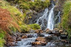 Erriff Falls (mickreynolds) Tags: comayo erriffwoods fall ireland nx500 westport wildatlanticway autumn woods water waterfall river rocks ferns