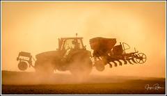 181015_1115_Traktor im Staub R.jpg (juergenfrother) Tags: nackenheim felder traktor staub landwirtschaft geräte