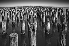 Silent army (kruser1947 (all killer no filler)) Tags: blackwhite bw monochrome melbourne pier