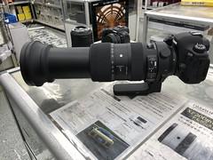 IMG_8007 (digitalbear) Tags: canon eos 6d markii eosr fujiyacamera tokyo japan sigma 60600mm f4563 dg sport