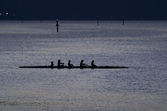 Out on the Bay Before Dawn (fksr) Tags: boat rowboat rowing water dawn morning sanfranciscobay larkspurlanding silhouette marincounty california