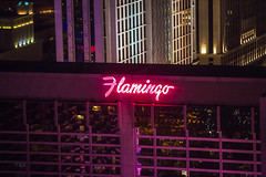 Pretty in Pink (Thomas Hawk) Tags: america clarkcounty ferriswheel flamingo flamingolasvegas highroller lasvegas lasvegasstrip nevada sincity usa unitedstates unitedstatesofamerica vegas neon