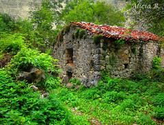 Abandono (Alicia B,) Tags: asturias casa house abandono españa spain europa europe bulnes abandonment old abandoned