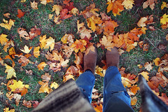 walk in leaves of gold (Ralaphotography) Tags: indian summer leaves foliage gold october herbst fall autumn trees outdoor walk natur coat