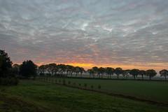 Sunrise Gewande I (Photography by Martijn Aalbers) Tags: sunrise zonsopgang sun zon nature natuur gewande shertogenbosch denbosch noordbrabant brabant thenetherlands nederland canoneos77d ef1740mmf40lusm