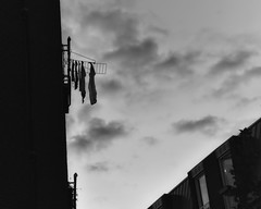 Looking up | Laundry