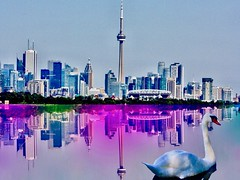 Colourful reflection of  beutiful Toronto (i_kaya@rogers.com) Tags: toronto canada ontario swan animal art photograph photography lake architecture