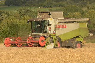 Claas Lexion 450 Combine Harvester cutting Spring Barley