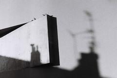 des oiseaux pour veiller sur les ombres (asketoner) Tags: birds shadows wall marseille city street france antennas roofs concrete geometry shapes
