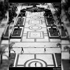 Praça Visconde de Mauá  Foto Marcus Cabaleiro Site: https://marcuscabaleirophoto.wixsite.com/photos Blog: http://marcuscabaleiro.blogspot.com.br/ #marcuscabaleiro #PraçaViscondeDeMauá #santos #centrohistórico #sp #brasil #nikon #olhares #fotografia #arte (marcuscabaleiro4) Tags: história brazil praçaviscondedemauá black brasil olhares fotografia arte linhas nikon marcuscabaleiro arquitetura photographer centrohistórico sp photography santos