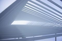 (LG_92) Tags: venice venezia architecture biennale 2018 freespace italy nikon dslr d3100 model installation parametric