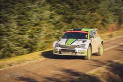 WRC Wales 2018 #1 (tbnate) Tags: tbnate wales wrc rally car sport sports motorsport panning skoda rovanpera kalle rovanperä wrc2 sweetlambhafren sweet lamb hafren nikon nikond750 d750 outdoor outside