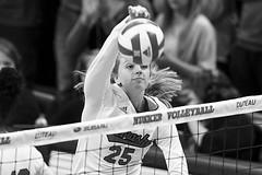 Minnesota v Nebraska 2018 (HuntingtonPhotos) Tags: 2018 nebraska volleyball nikon d5 callieschwarzenbach haroldhouserphotography blackandwhite sports hmfrphotos huntingtonphotos