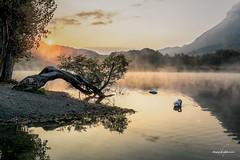 Aspettando il nuovo giorno (Diego Pianarosa (aka Pinku)) Tags: diegopianarosa pinku sunrise alba cigni lake lago del piano italy italia como porlezza lombardia paesaggio landscape wow cool soe