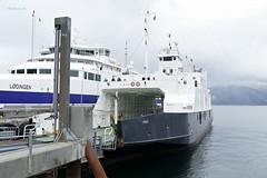 """""""Virak"""" (OlafHorsevik) Tags: virak ferge ferga ferry ferja ferje torghattennord thn lødingen reserveferge"""