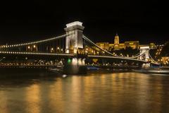 Golden Danube (Saavedra Ruiz) Tags: budapest hungary hungarian bridge chains castle buda europe danube river golden gold lights night yellow skyline