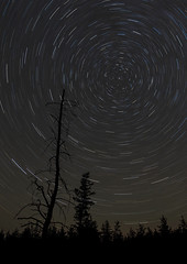 Star Trail Chippewa County MI UP Sept 2018_E1U1643 (www.sabrewingtours.com) Tags: astronomy night sky star gazing michigan up chippewa county brian zwiebel bz sabrewing nature tours snt trails north
