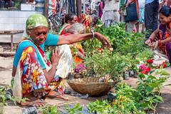 Street seller of Varanasi..India (geolis06) Tags: geolis06 asia asie inde india uttarpradesh varanasi benares gange ganga ghat inde2017 olympusgeolis06 street rue seller man portrait streetseller vendeurderue olympus olympusm1240mmf28 olympuspenf banaras