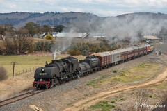 Bungendore Blast (Henry's Railway Gallery) Tags: 6029 ad60class garratt steamlocomotive steamtrain heritagetrain thnsw transportheritagensw passengertrain 6s80 bungendore