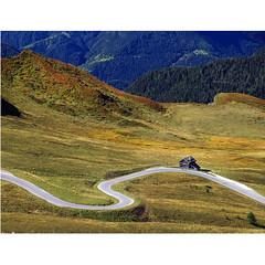 SinuosaMente (Robyn Hooz) Tags: giau passo pass dolomiti rifugio hut road tar lawn cones alberi pines ampezzo cortina dolomites