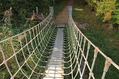 Veerse bos (veere) (Omroep Zeeland) Tags: bos veere brug
