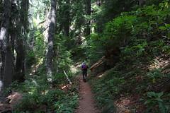 Tidbits Mountain-014 (rozoneill) Tags: tid bits mountain mckenzie river blue lake willamette national forest hiking oregon